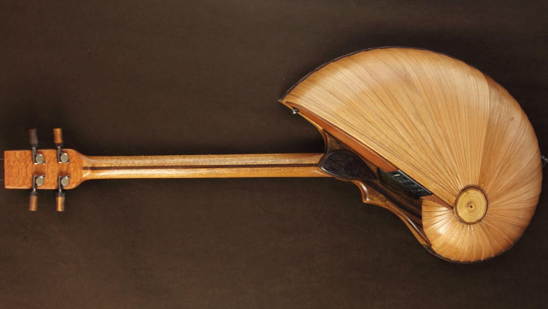 Acoustic U-bass shell back
