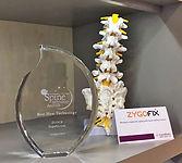 zygofix-award.jpg