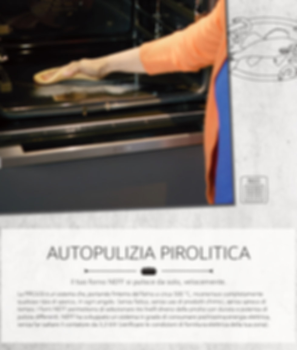 Pirolisi 1 NEFF_page-0001.jpg