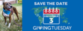 giving tuesday (1).png
