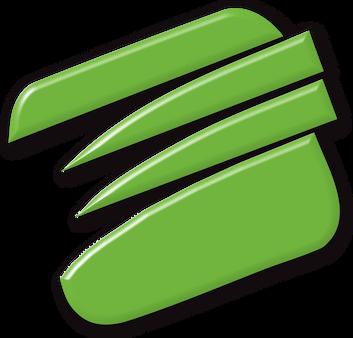 Evolution AVS Flat logo