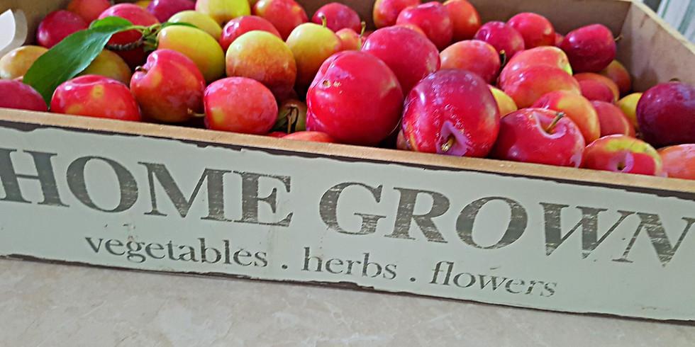Home Grown Produce Swap