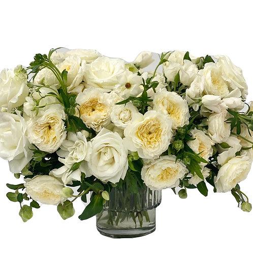 Ivory English Garden Roses