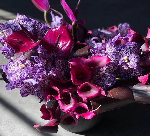 Grammy Purple.jpg