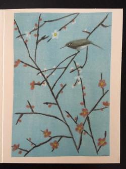 Barbara's bird and blossoms