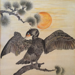 Karen's Cormorant in Pine