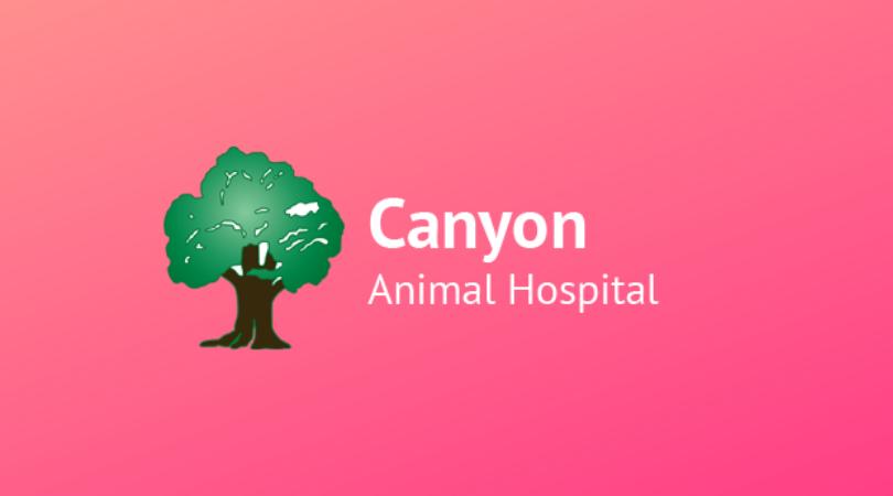Canyon Animal
