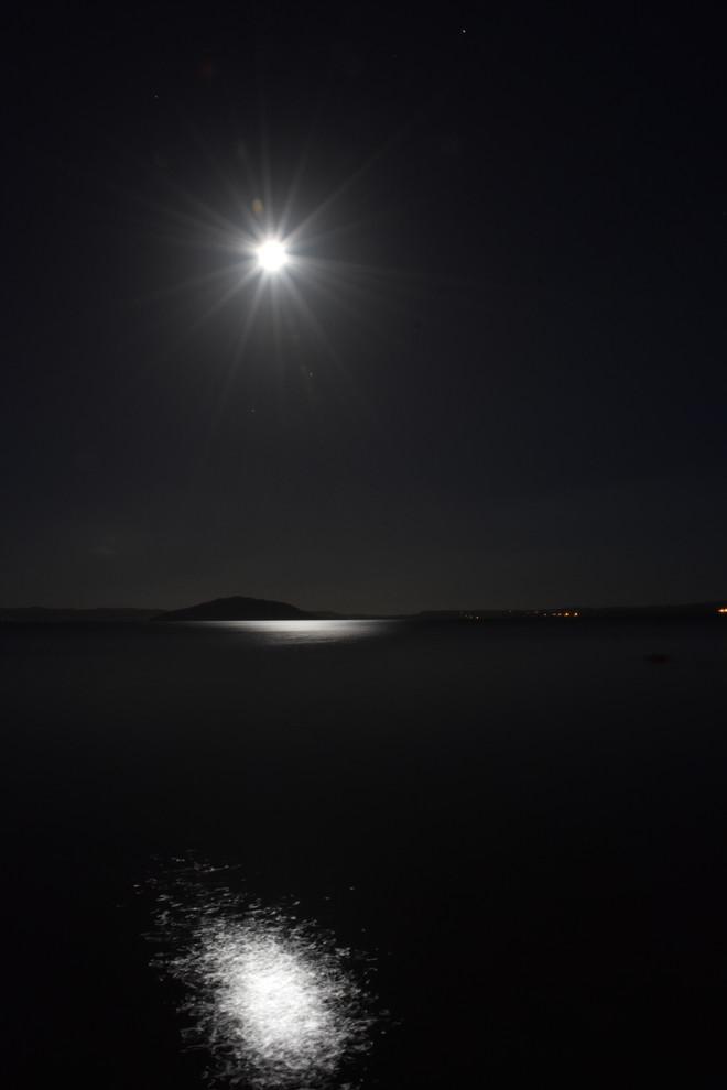 Mohammed Al Nashar | Mokoia Inland, Lake Rotorua