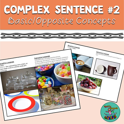 Complex Sentence Comprehension #2: Comprehension of Basic / Opposite Concepts