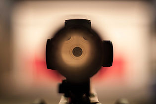 .22 sporting rifle optic