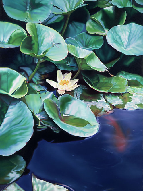 WATERLILIES NO.4 -  Limited Edition Canvas Print