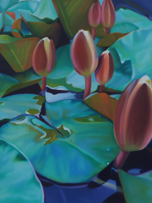 WATERLILIES NO.9   Original Painting