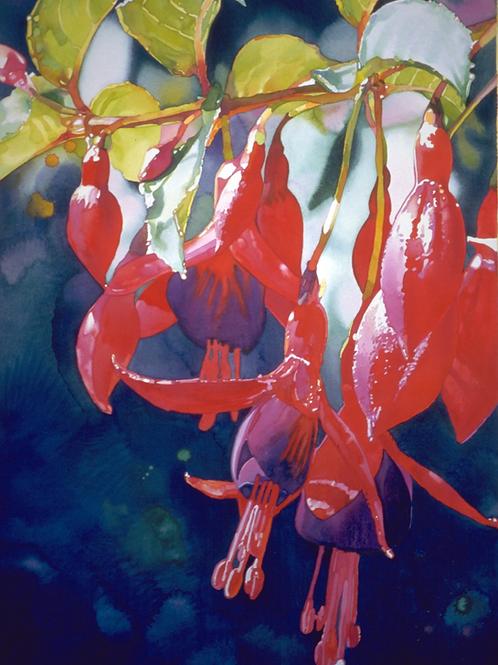 Fuchsia's   Original Painting