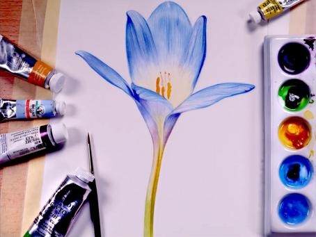 Watercolor Wednesday's Blue Crocus