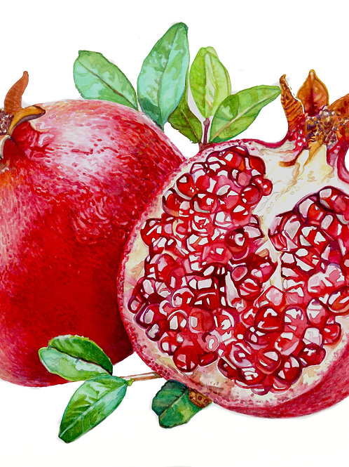 Pomegranates    Original Painting