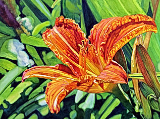 Summer Lily is an Original Watercolor by Brynn Carroll