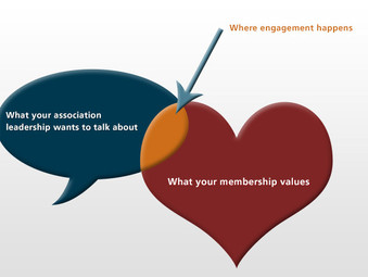 Managing for Sustainable Member Engagement