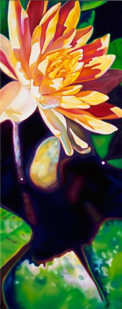Waterlilies NO.8