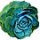 Thumbnail: Succulents   Original Painting