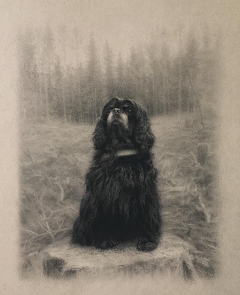 Tinka, Skogens Dronning
