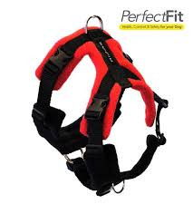 Our favourite harnesses!