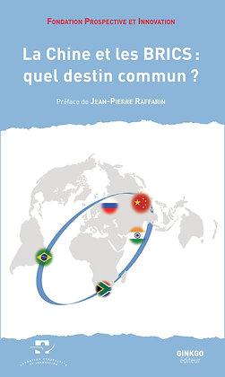 La Chine et les BRICS : quel destin commun ?