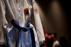 Martial Arts Workshop with US Taido