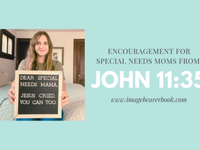 Encouragement for special needs moms- Jesus cried. You can too.
