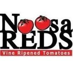 Noosa Reds