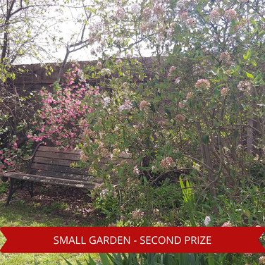Second Prize Small Garden.png