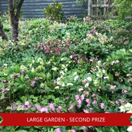 Second Prize Large Garden Bed.png