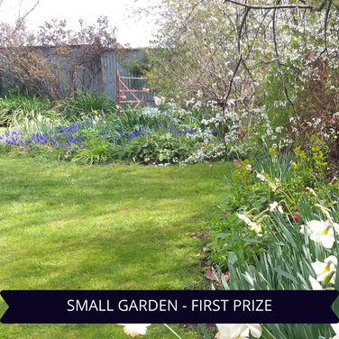 First Prize Small Garden.png