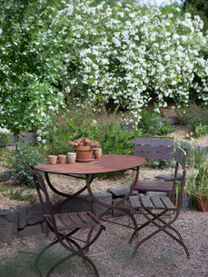 Deborahs Garden-68.jpg