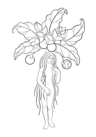 Mandrake_.jpg