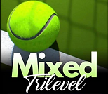 mixed_trilevel.PNG