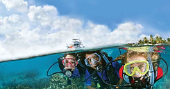 padi-open-water-diving.jpg