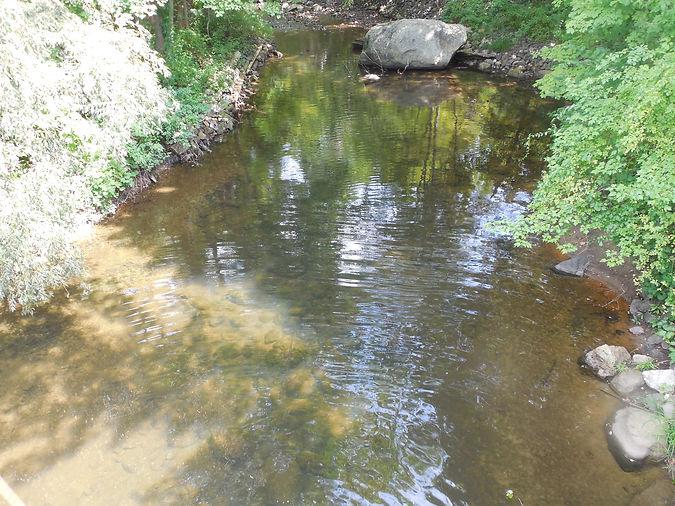 NonnR Wby - Route 61 Bridge US - Bacteri