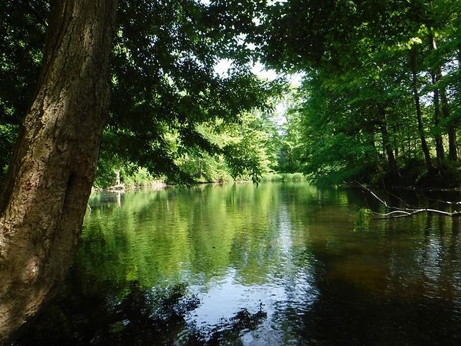 Pomperaug River at Middle Quarter 2018.J