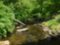 Weekeepeemee River at  Woodcreek Rd 2018