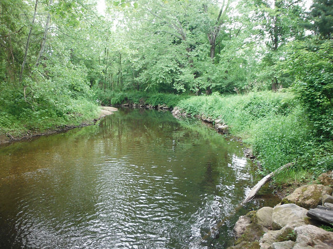 Pomperaug River at Hollow Park 2015.JPG