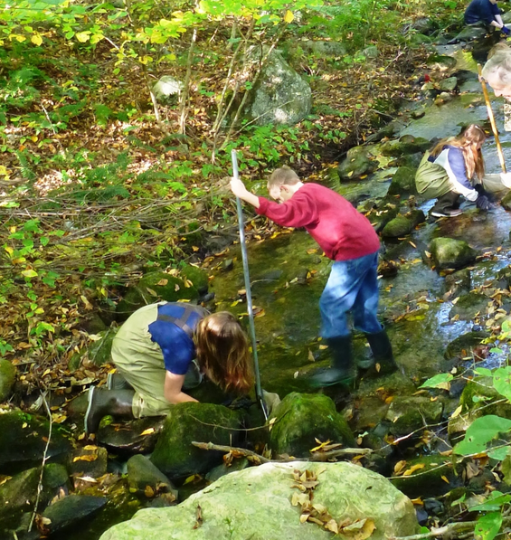 Macroinvertebrate Survey Program