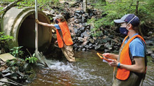 Stream Assessments in a Socially Distant Landscape