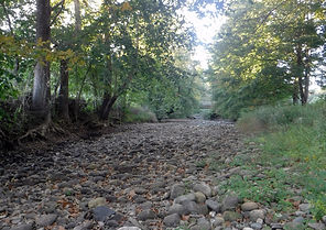 Weekeepeemee River at Three Rivers Park Woodbury - dry channel - 9.23.15