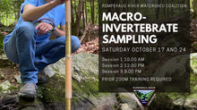 Volunteers Invited to Join Pomperaug River Watershed Coalition's 15th Annual Macroinvertebrate Surve