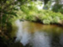 WeekR Wby - Jacks Bridge Rd Bridge US -