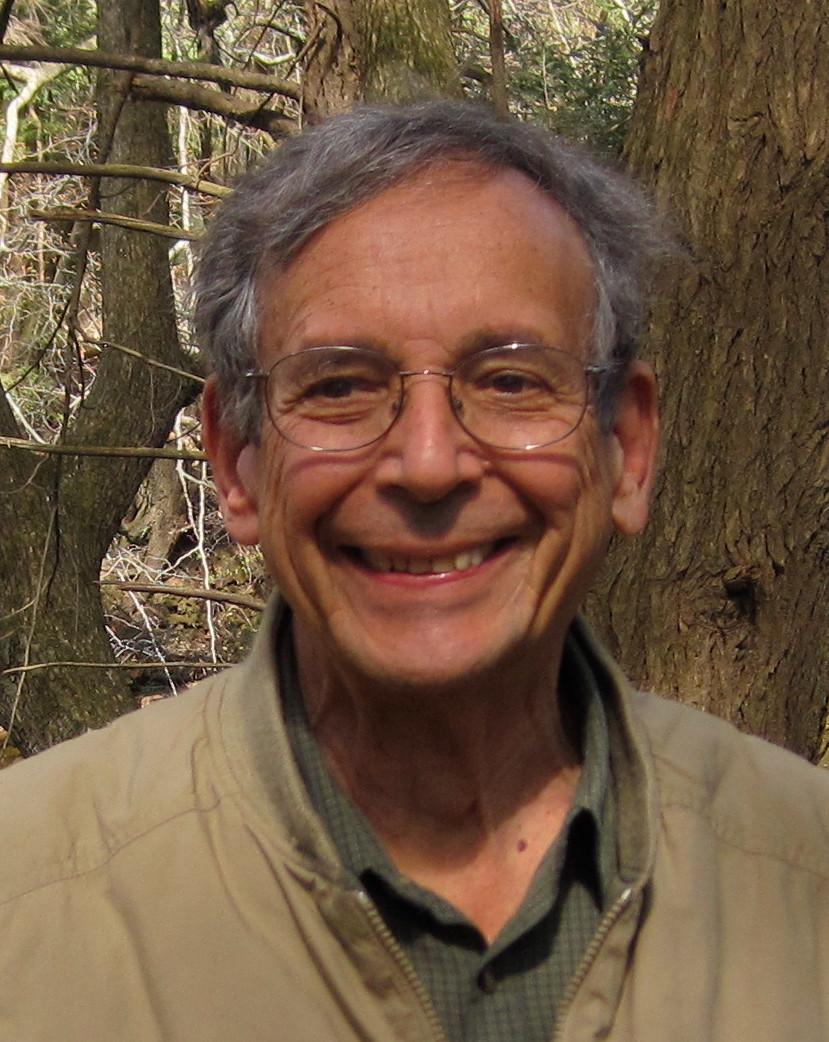 Dr. Marc Taylor