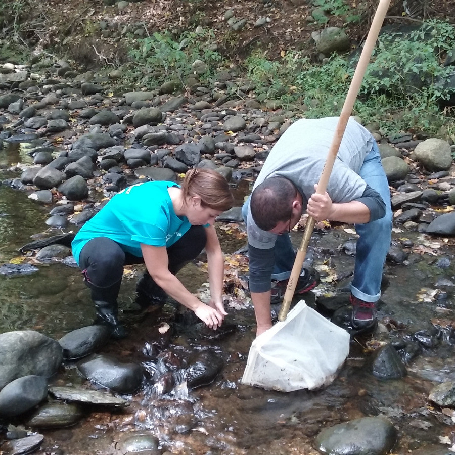 Volunteers Tracy Frate and Jonathan Goldberg survey for macroinvertebrates in Sprain Brook off Papermill Road in Woodbury.