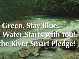 Think Green, Stay Blue:  Clean Water Starts with You!