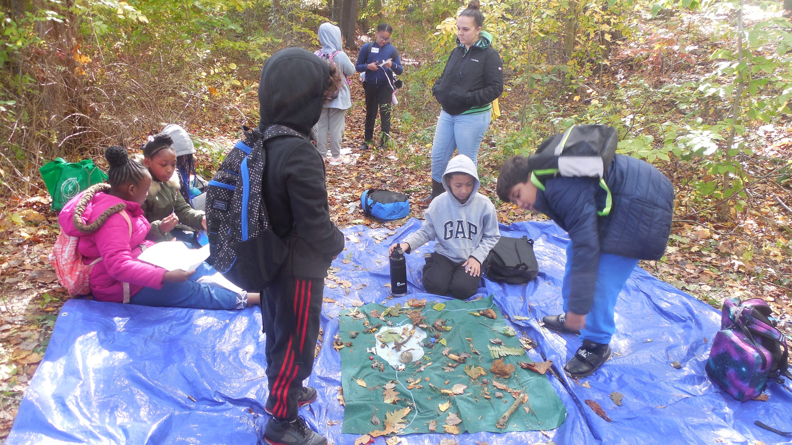 ASAP! Metamorphosis students at Trolley Bed Preserve