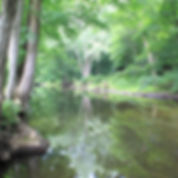 Pomperaug River at Three Rivers Park in